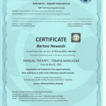 terapia-manualna-kaltenorn-oex